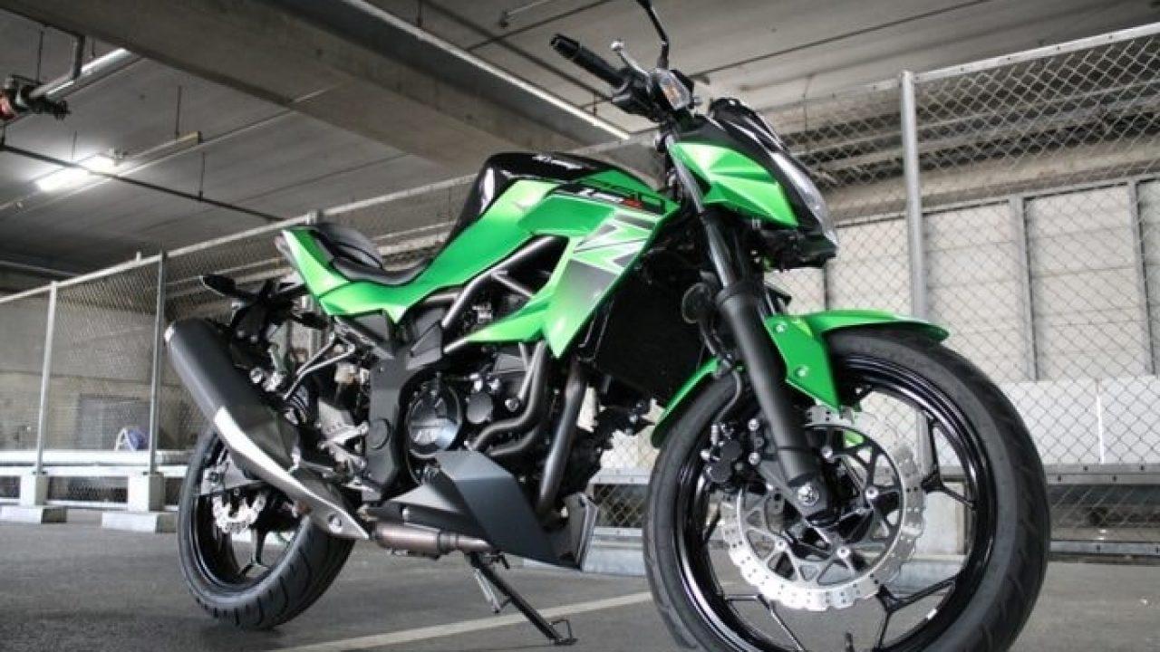 Kawasaki 250-400 ATV Cover L 2